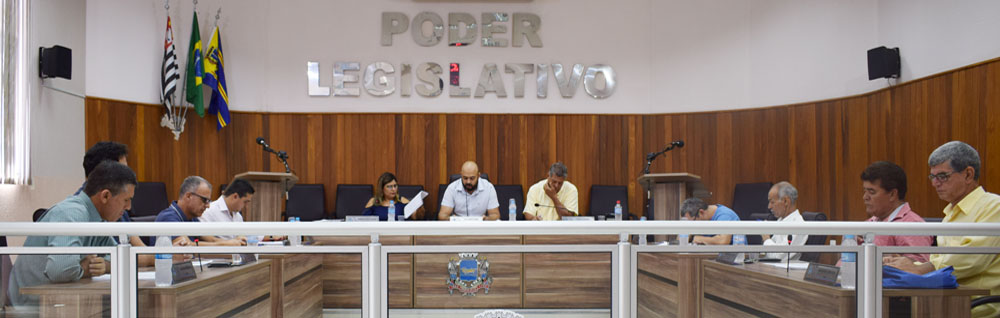 Câmara Municipal realiza 1ª Sessão Extraordinária de 2020
